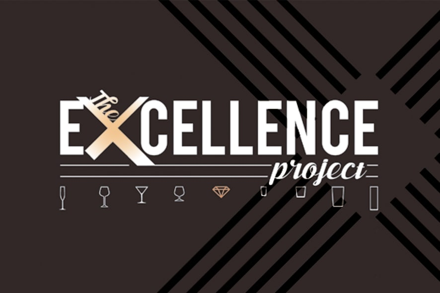 excellence project