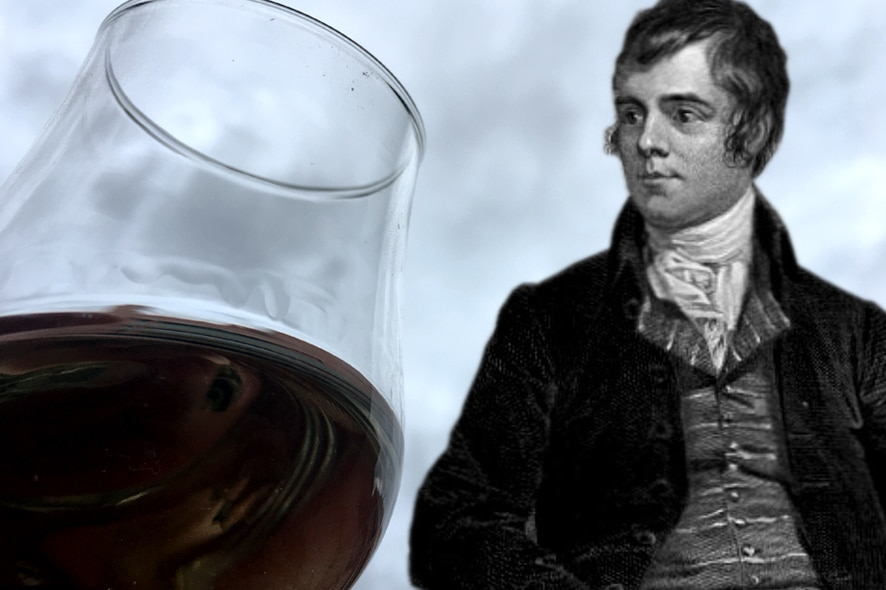 whiskies escoceses robert burns